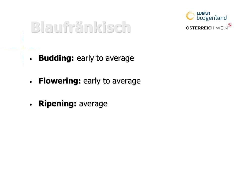Blaufränkisch Budding: early to average Budding: early to average Flowering: early to average Flowering: early to average Ripening: average Ripening: average