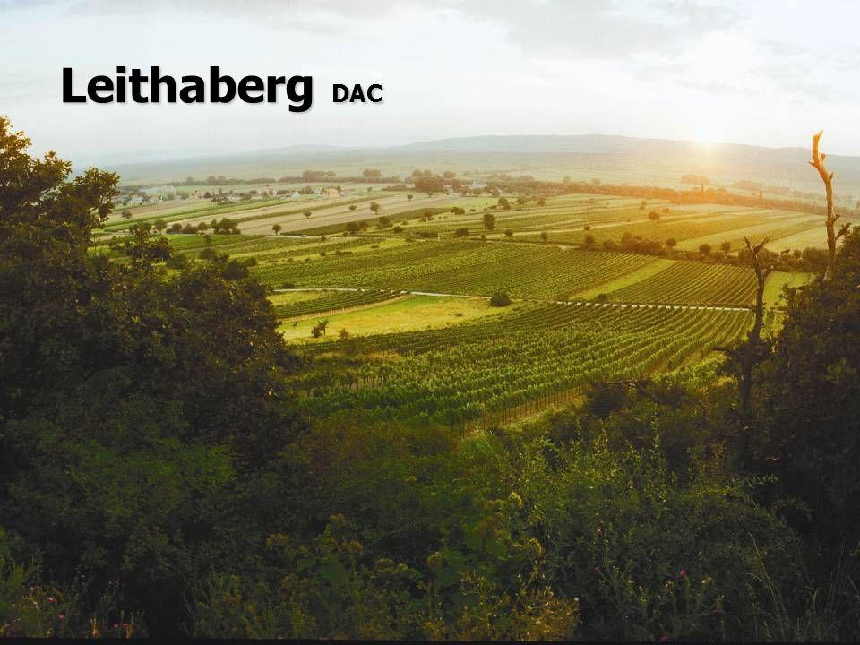 Leithaberg DAC