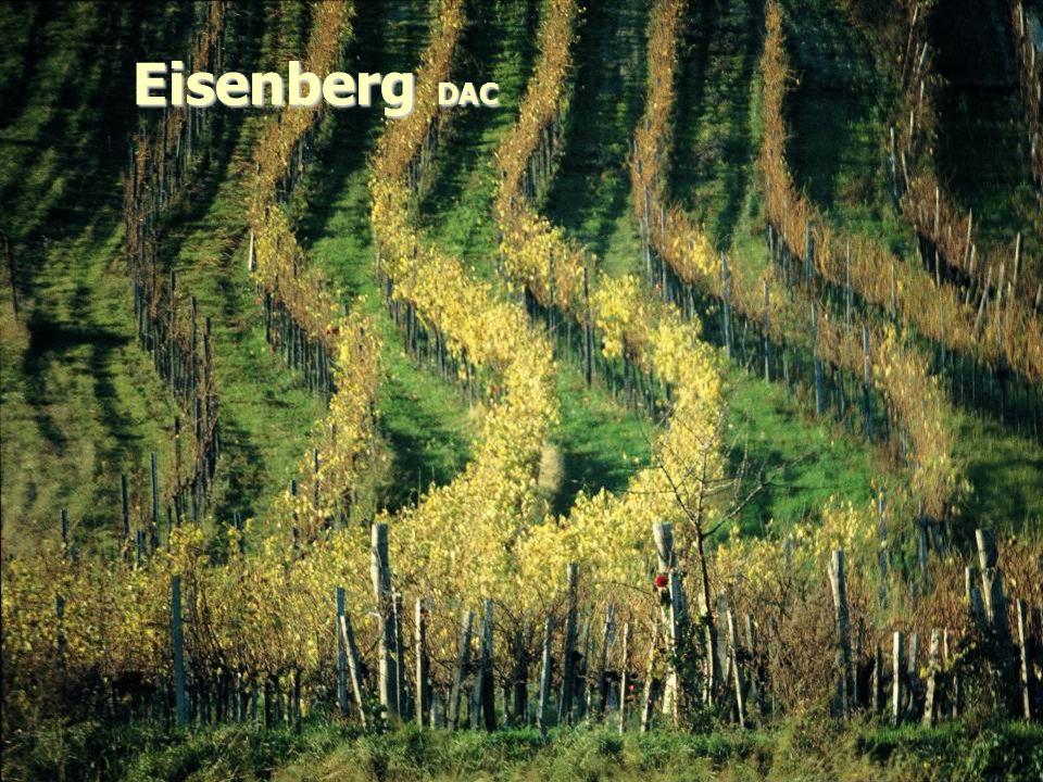 Eisenberg DAC