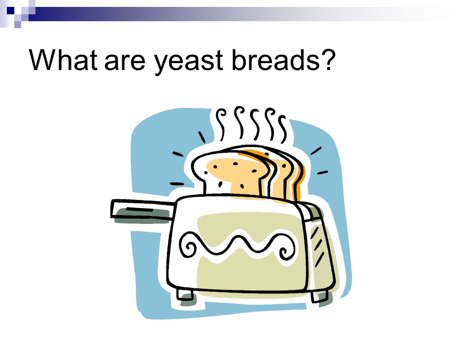 What are yeast breads