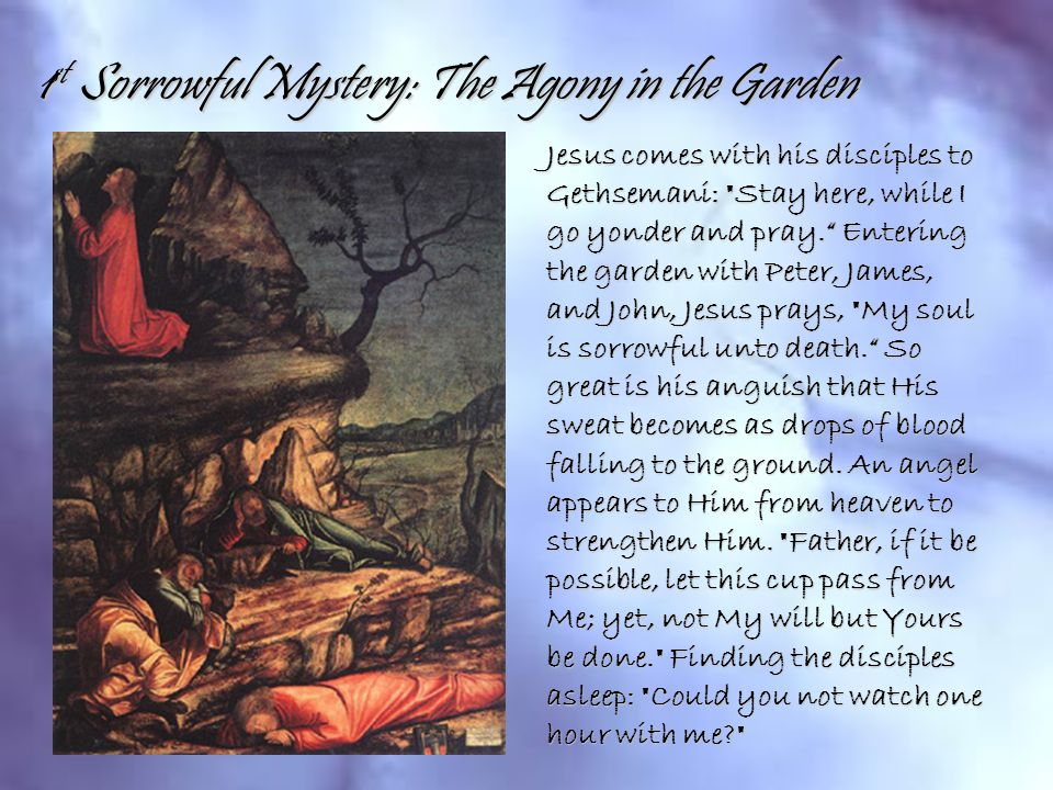 1 st Sorrowful Mystery: The Agony in the Garden Jesus comes with his disciples to Gethsemani: Stay here, while I go yonder and pray. Entering the garden with Peter, James, and John, Jesus prays, My soul is sorrowful unto death. So great is his anguish that His sweat becomes as drops of blood falling to the ground.