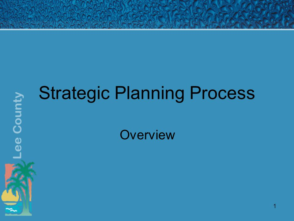 1 Strategic Planning Process Overview