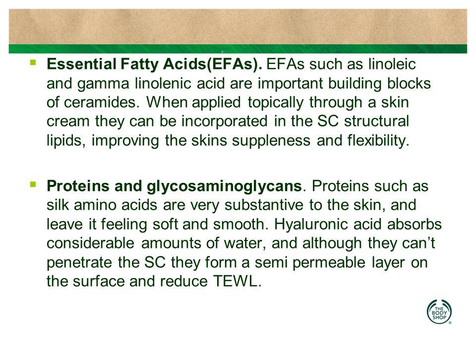  Essential Fatty Acids(EFAs).