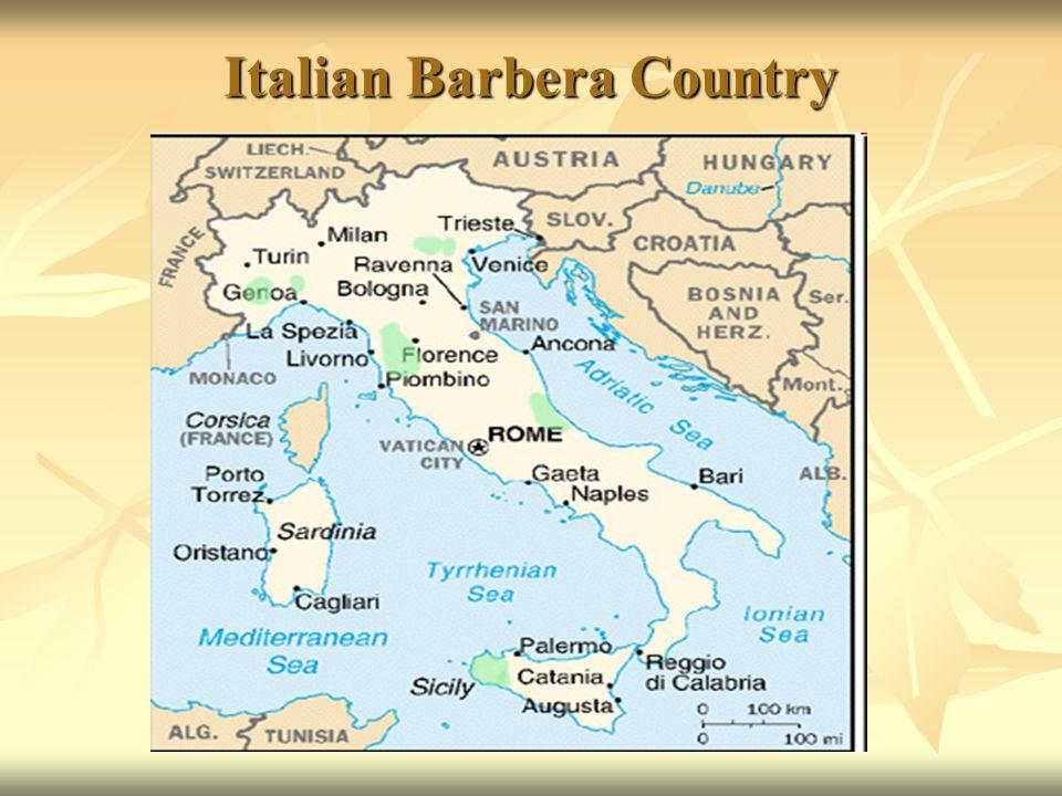 Italian Barbera Country