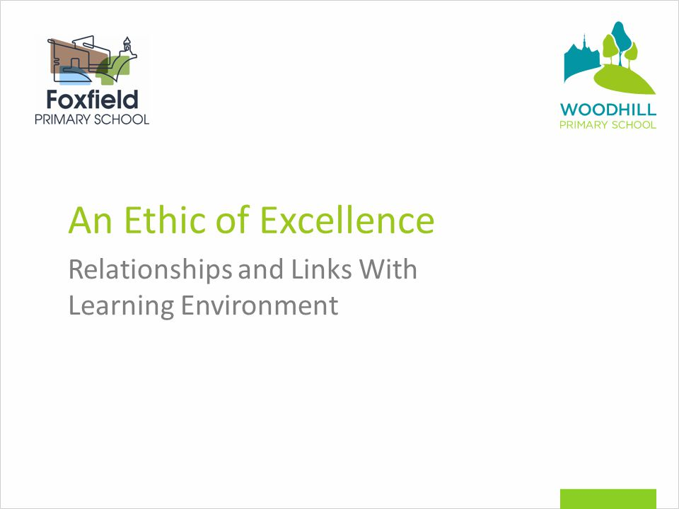 An Ethic of Excellence Relationships and Links With Learning Environment