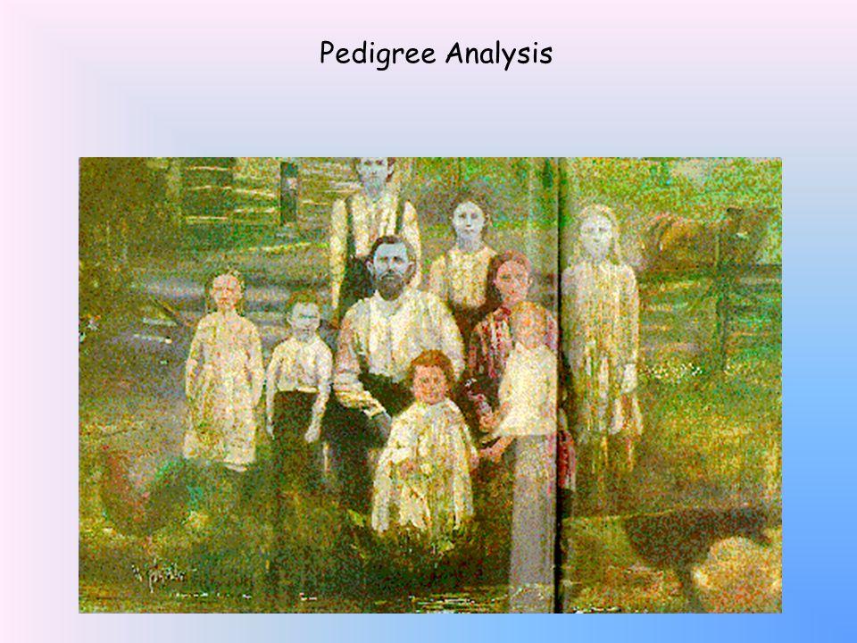 Pedigree Analysis What's in YOUR family tree Pedigree Analysis