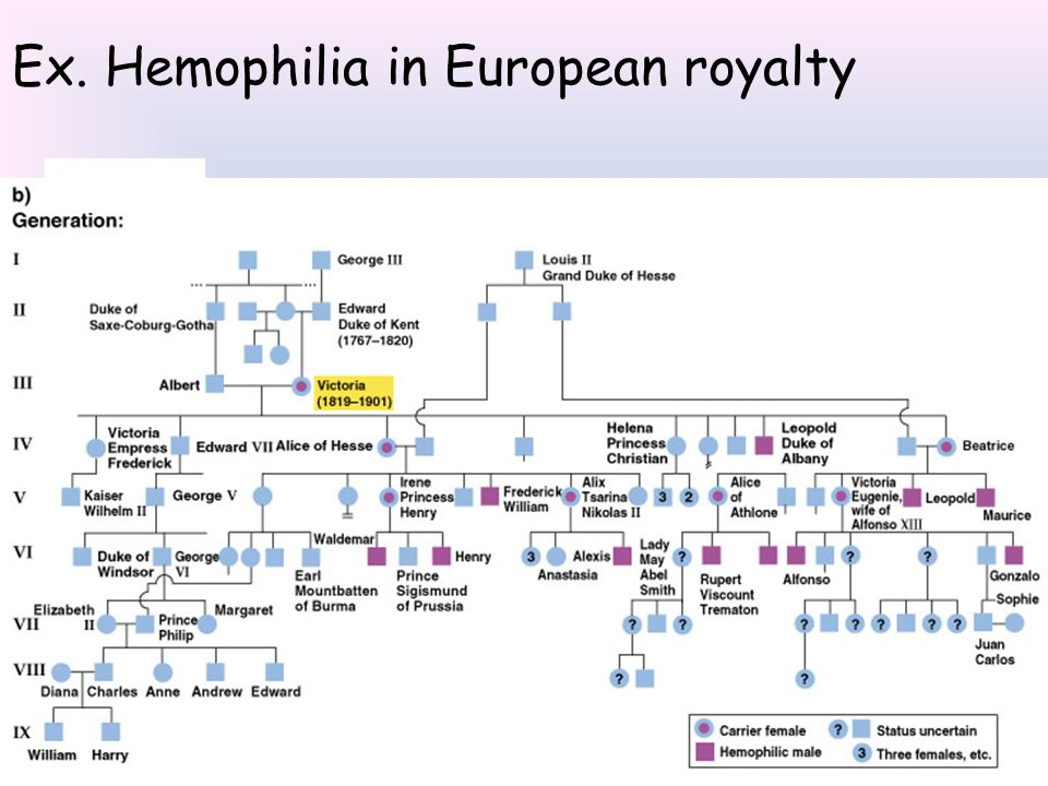 Ex. Hemophilia in European royalty