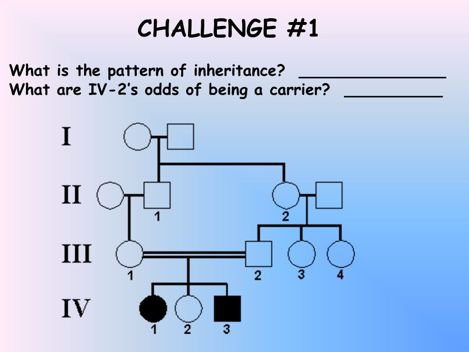 CHALLENGE #1 What is the pattern of inheritance.