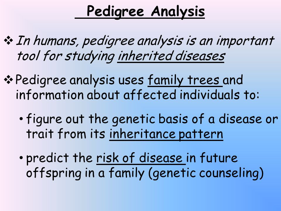  In humans, pedigree analysis is an important tool for studying inherited diseases  Pedigree analysis uses family trees and information about affected individuals to: figure out the genetic basis of a disease or trait from its inheritance pattern predict the risk of disease in future offspring in a family (genetic counseling)