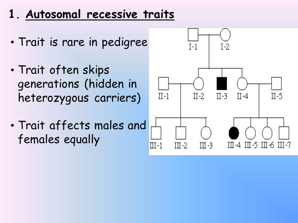 Autosomal recessive diseases in humans:  Most common ones Cystic fibrosis Sickle cell anemia Phenylketonuria (PKU)  These may be more common because their heterozygotes all give a survival advantage!.