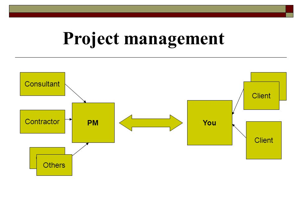 PM You Consultant Contractor Others Client Others Client Project management