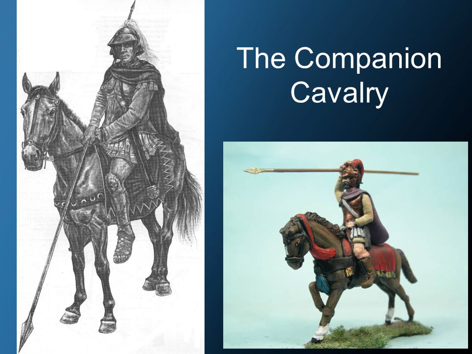 The Companion Cavalry