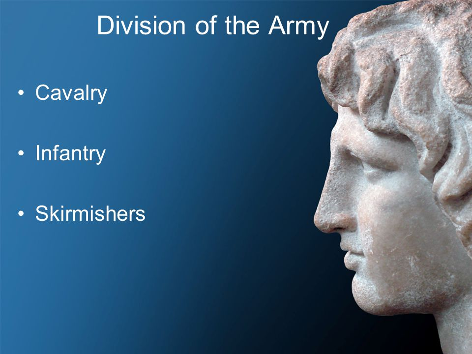 Division of the Army Cavalry Infantry Skirmishers