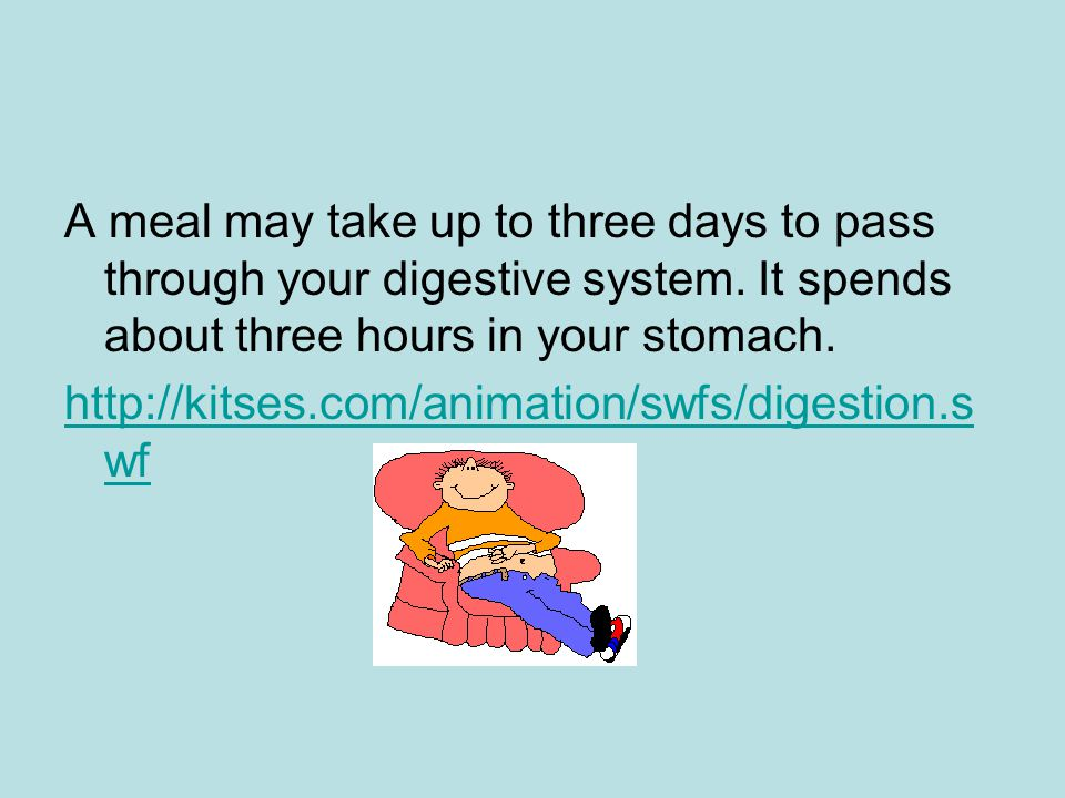 A meal may take up to three days to pass through your digestive system. It spends about three hours in your stomach. http://kitses.com/animation/swfs/
