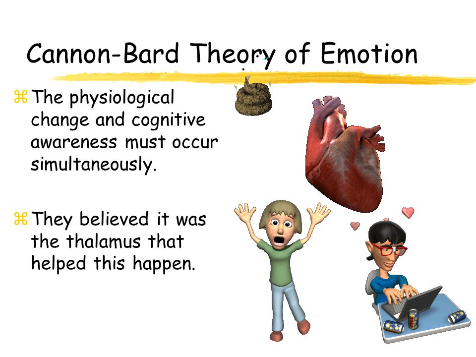 James-Lange Theory of Emotion  Experience of emotion is awareness of physiological responses to emotion-arousing stimuli Fear (emotion)‏ Pounding heart (arousal)‏ Sight of oncoming car (perception of stimulus)‏