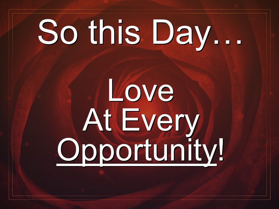 So this Day… Love At Every Opportunity! So this Day… Love At Every Opportunity!