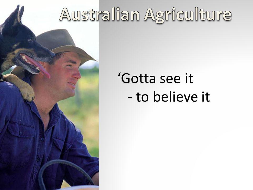 'Gotta see it - to believe it