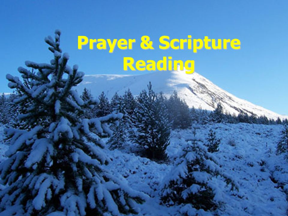 Prayer & Scripture Reading