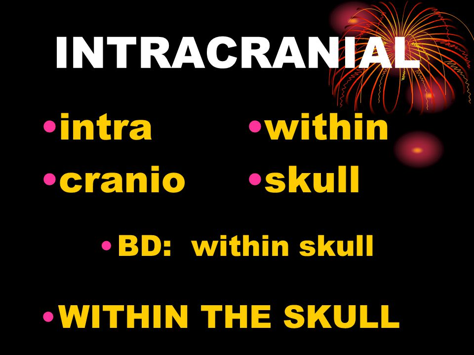 INTRACRANIAL intra cranio within skull BD: within skull WITHIN THE SKULL
