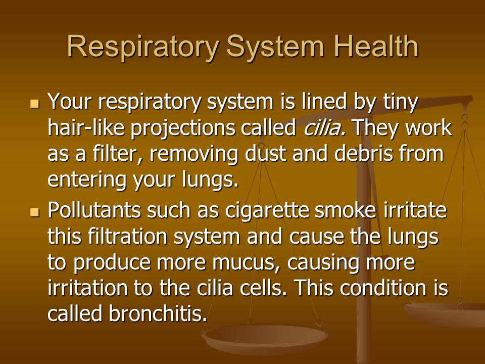 Respiratory System Health Your respiratory system is lined by tiny hair-like projections called cilia. They work as a filter, removing dust and debris