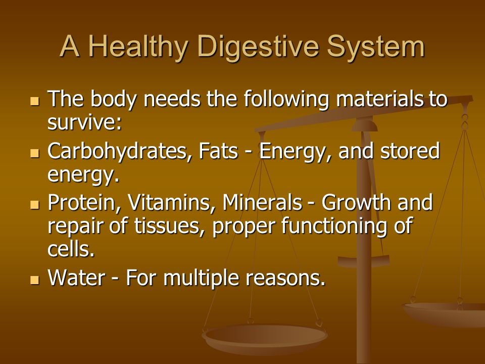 A Healthy Digestive System The body needs the following materials to survive: The body needs the following materials to survive: Carbohydrates, Fats -