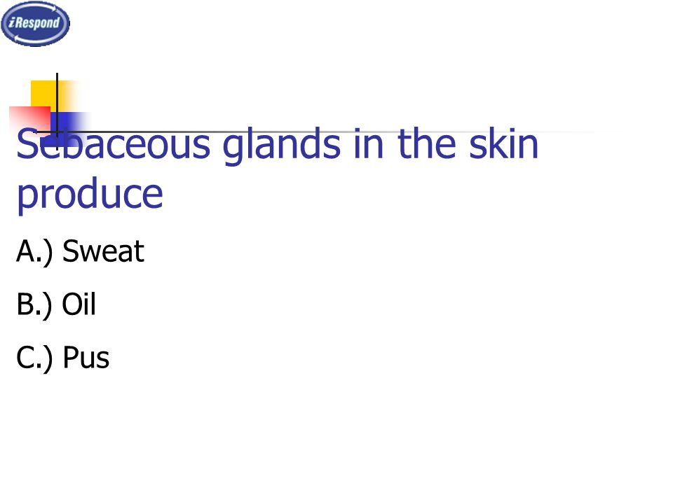 Sebaceous glands in the skin produce A.) Sweat B.) Oil C.) Pus