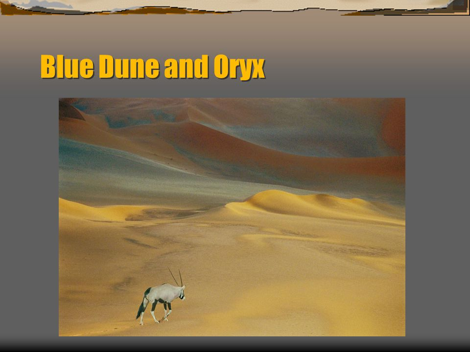 Blue Dune and Oryx