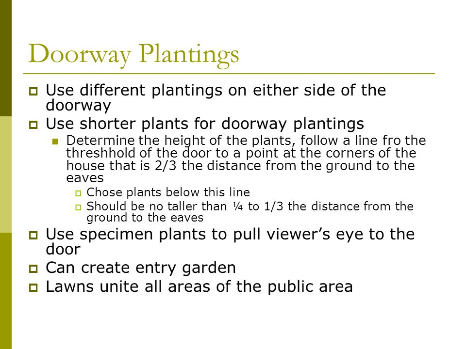 Doorway Plantings  Use different plantings on either side of the doorway  Use shorter plants for doorway plantings Determine the height of the plant