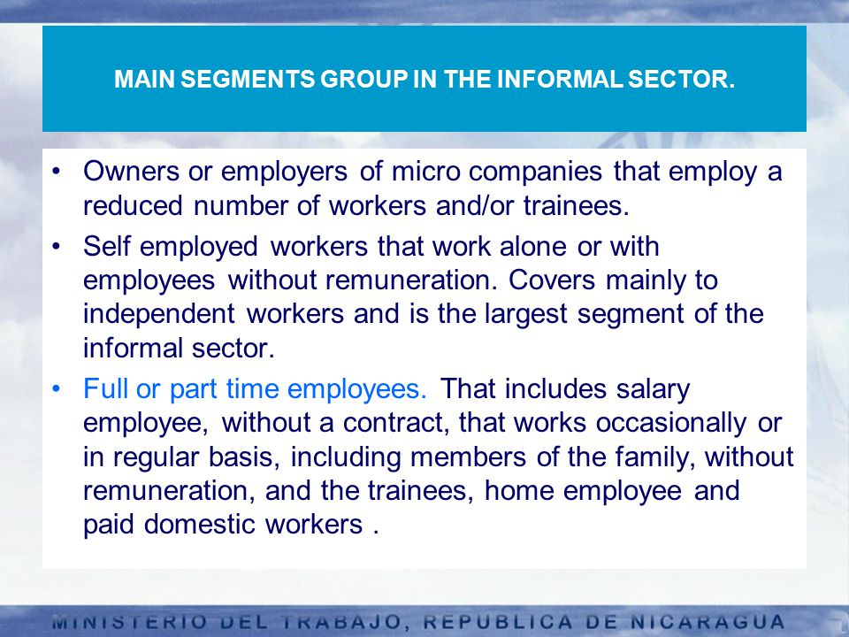 MAIN SEGMENTS GROUP IN THE INFORMAL SECTOR.