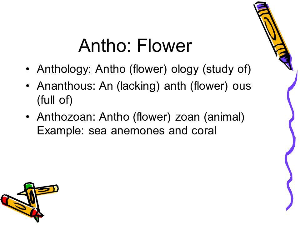 Arbor: Tree Abor: Tree Aboreal: Arbor (tree) eal (related to) Aboretum: Arbor (tree) etum(place)