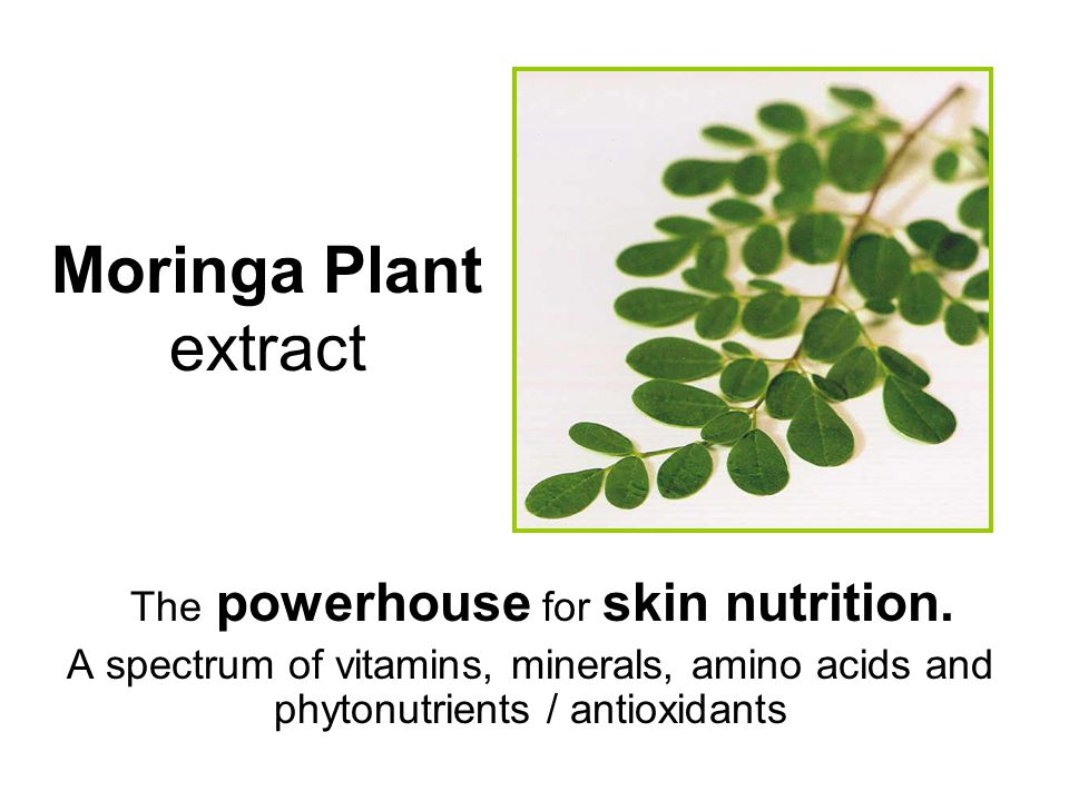 The powerhouse for skin nutrition.