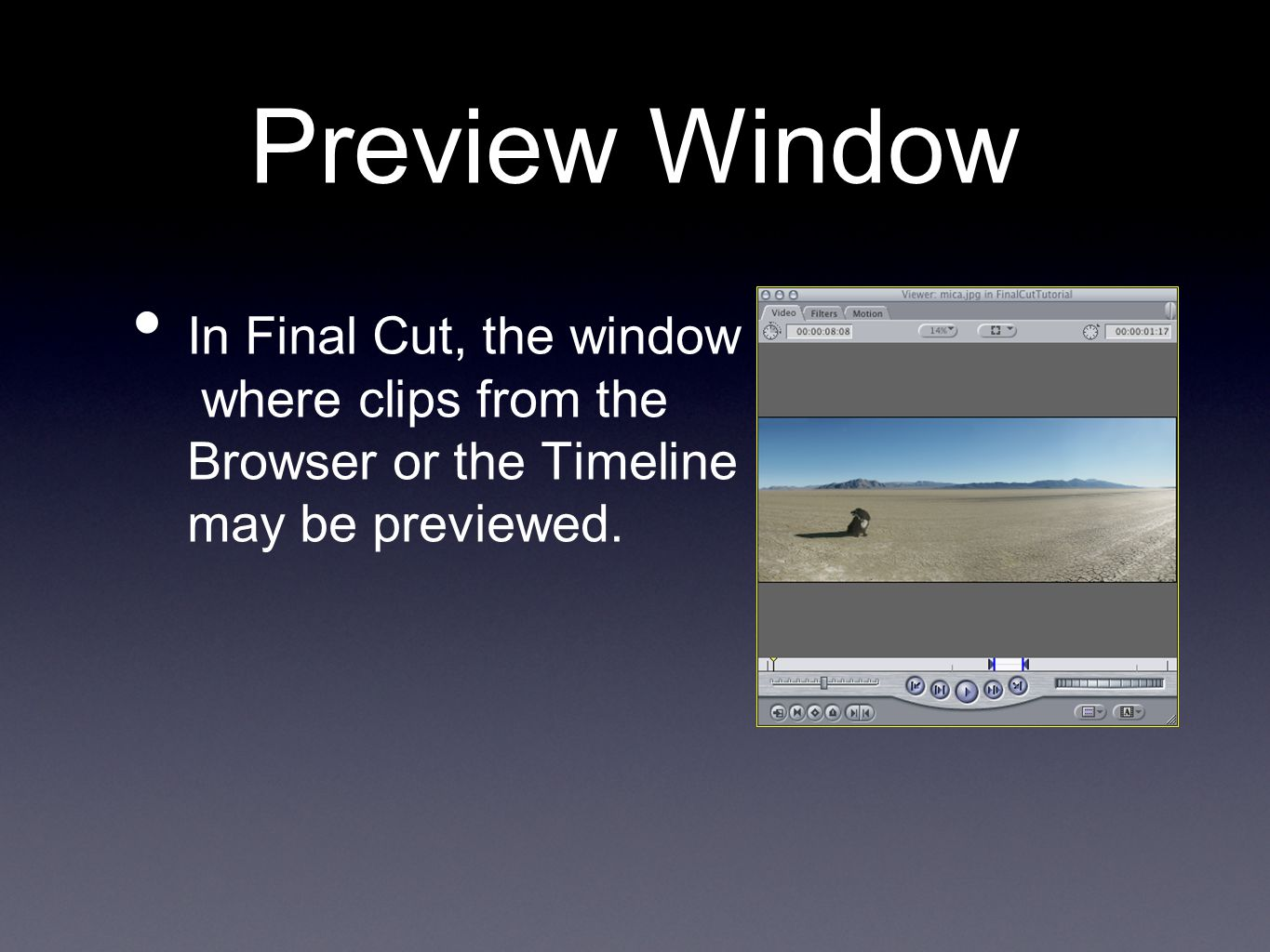 Preview Window In Final Cut, the window where clips from the Browser or the Timeline may be previewed.