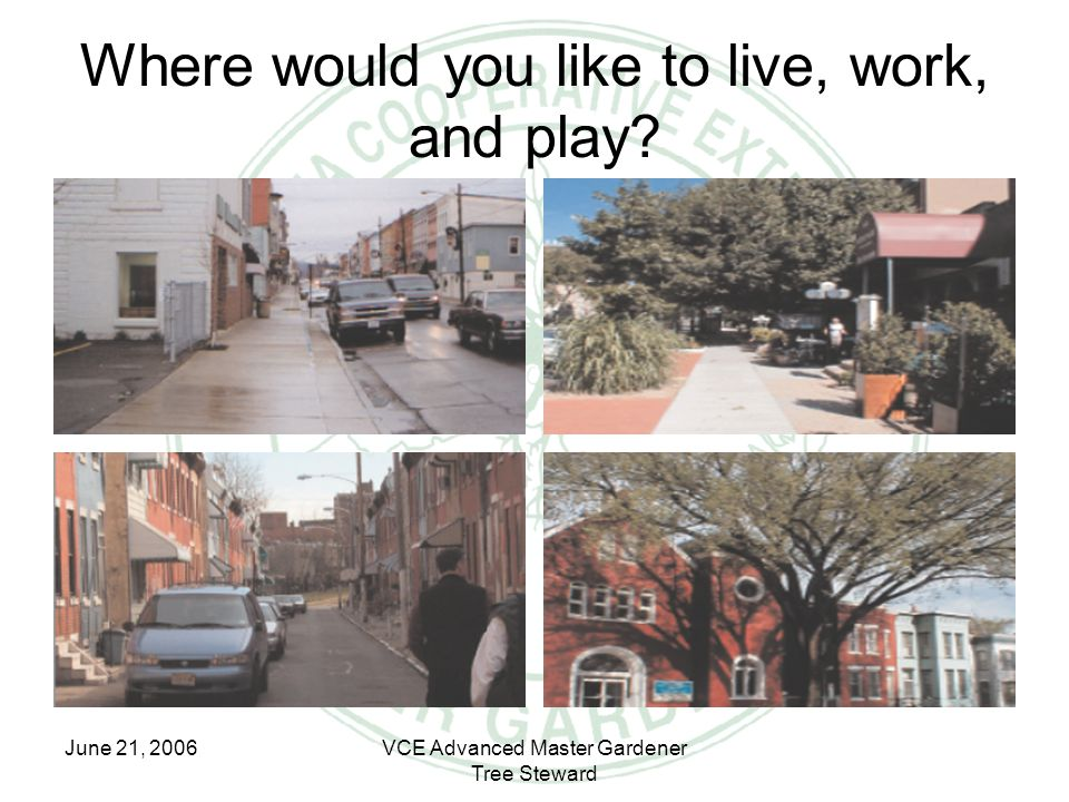 June 21, 2006VCE Advanced Master Gardener Tree Steward Where would you like to live, work, and play?
