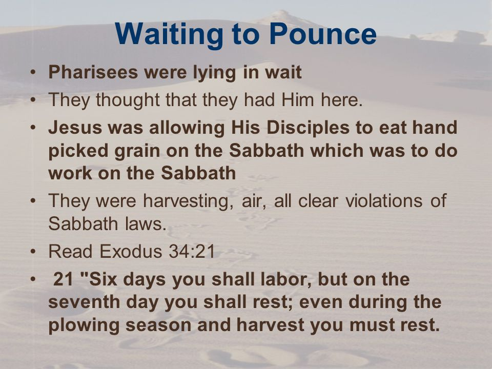 Waiting to Pounce Pharisees were lying in wait They thought that they had Him here.