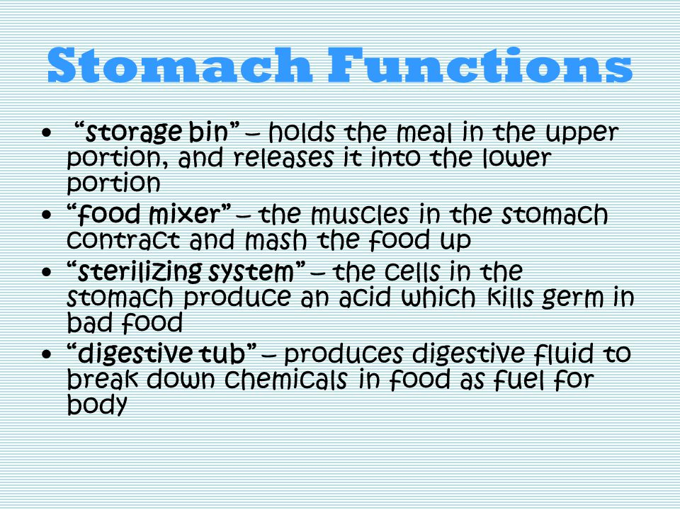 Stomach Functions storage bin – holds the meal in the upper portion, and releases it into the lower portion food mixer – the muscles in the stomach contract and mash the food up sterilizing system – the cells in the stomach produce an acid which kills germ in bad food digestive tub – produces digestive fluid to break down chemicals in food as fuel for body