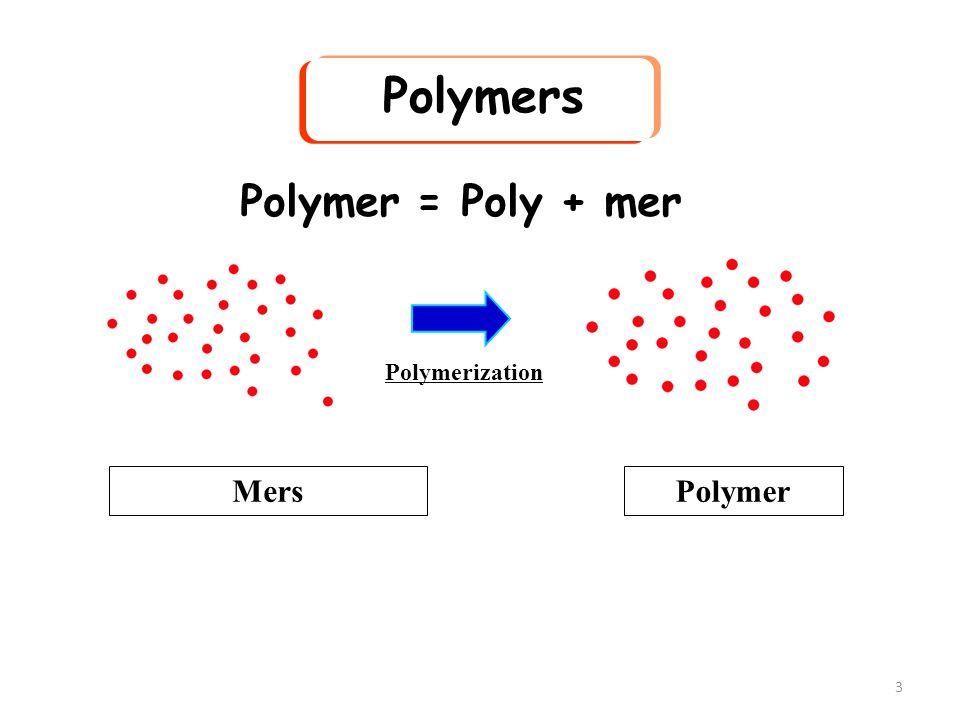 3 Polymers Polymer = Poly + mer Polymerization MersPolymer