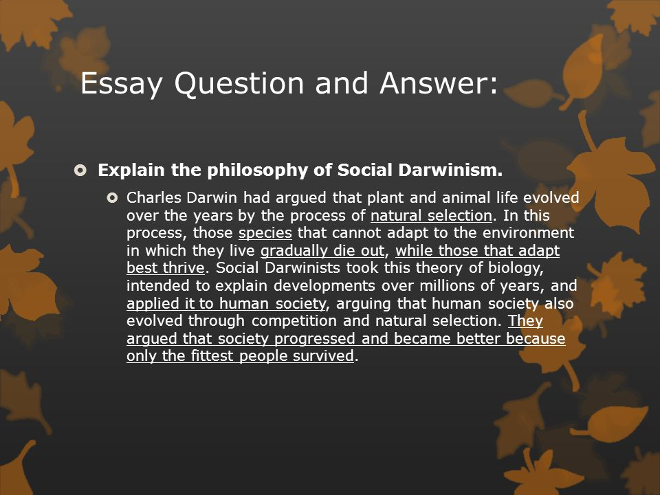 Praxis Core For Dummies With Online Practice Tests Essay About  Journal Making Connections Revolution And Pages Social Darwinism Essay