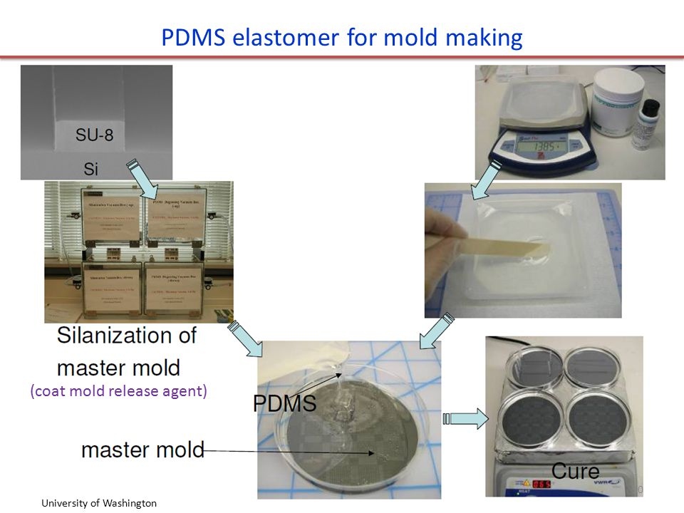 PDMS elastomer for mold making University of Washington (coat mold release agent) 50