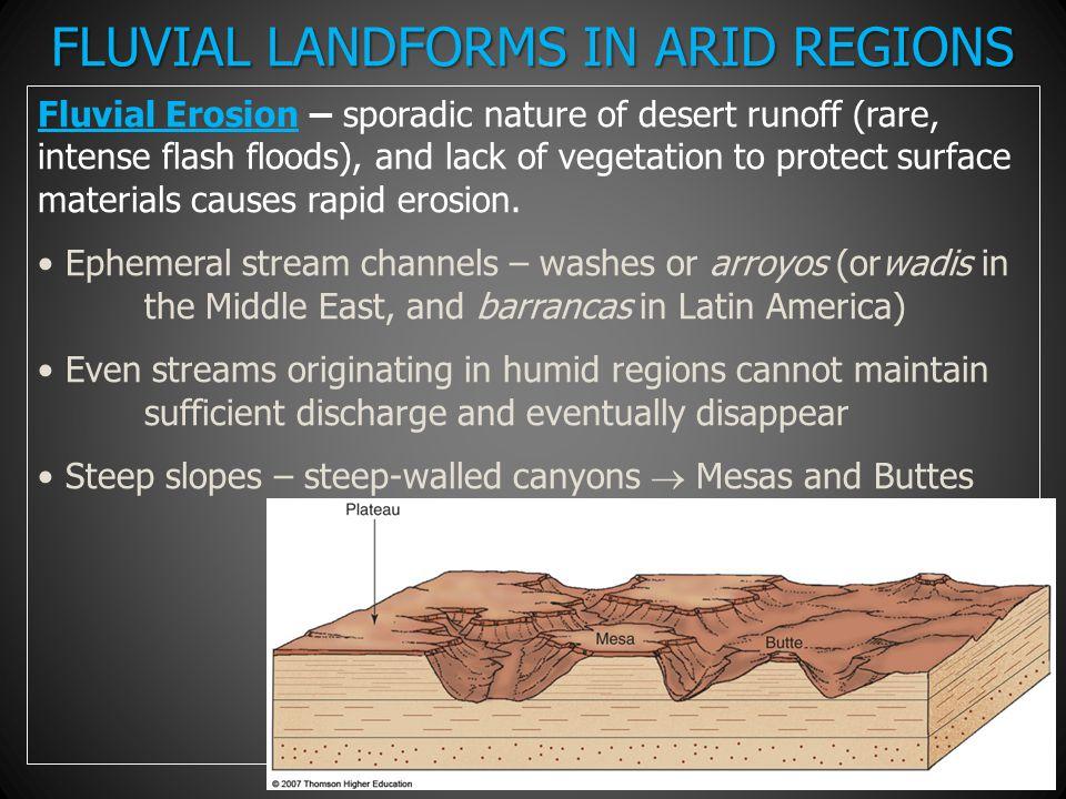 FLUVIAL LANDFORMS IN ARID REGIONS Fluvial Erosion – sporadic nature of desert runoff (rare, intense flash floods), and lack of vegetation to protect s