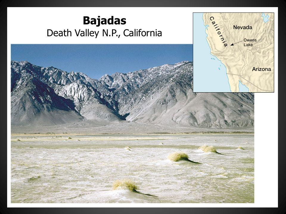 Bajadas Death Valley N.P., California