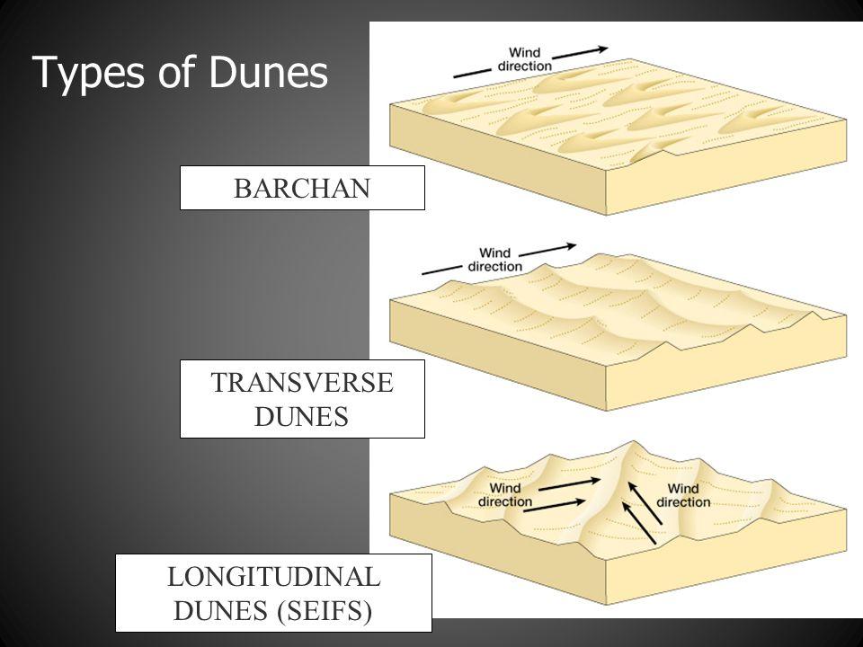 Types of Dunes BARCHAN TRANSVERSE DUNES LONGITUDINAL DUNES (SEIFS)
