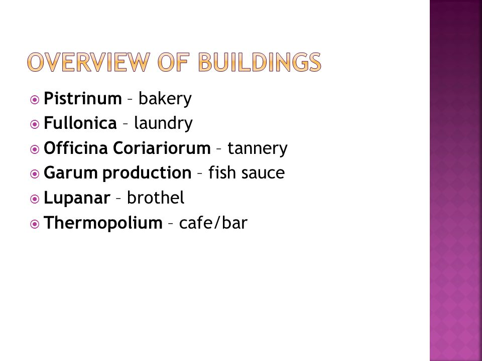  Pistrinum – bakery  Fullonica – laundry  Officina Coriariorum – tannery  Garum production – fish sauce  Lupanar – brothel  Thermopolium – cafe/