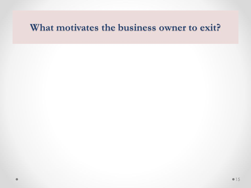 15 What motivates the business owner to exit?