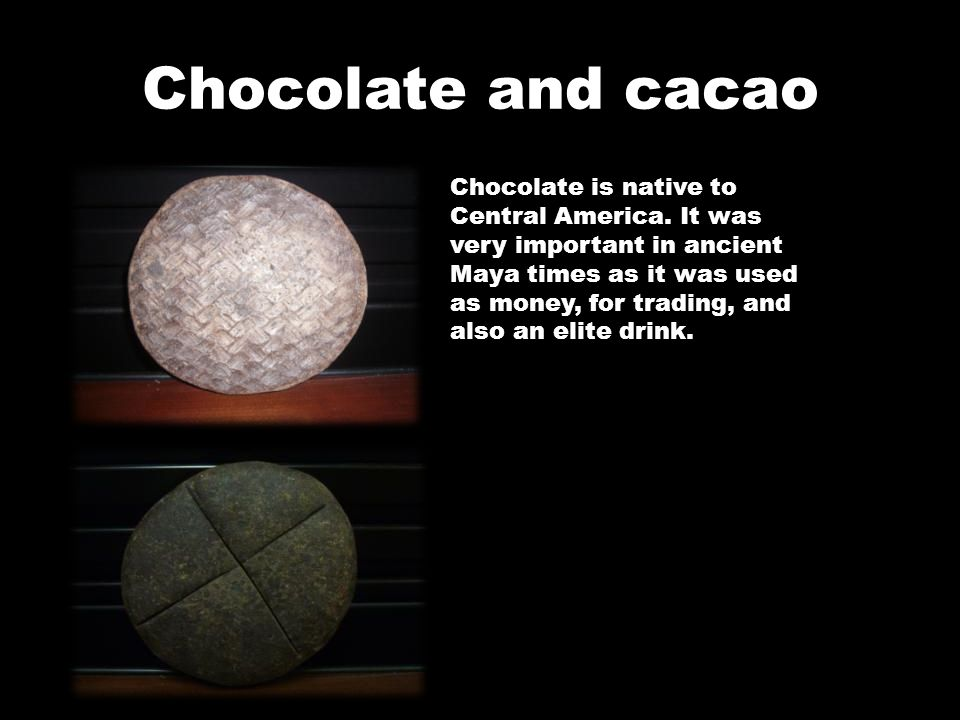 Chocolate and cacao Chocolate is native to Central America. It was very important in ancient Maya times as it was used as money, for trading, and also