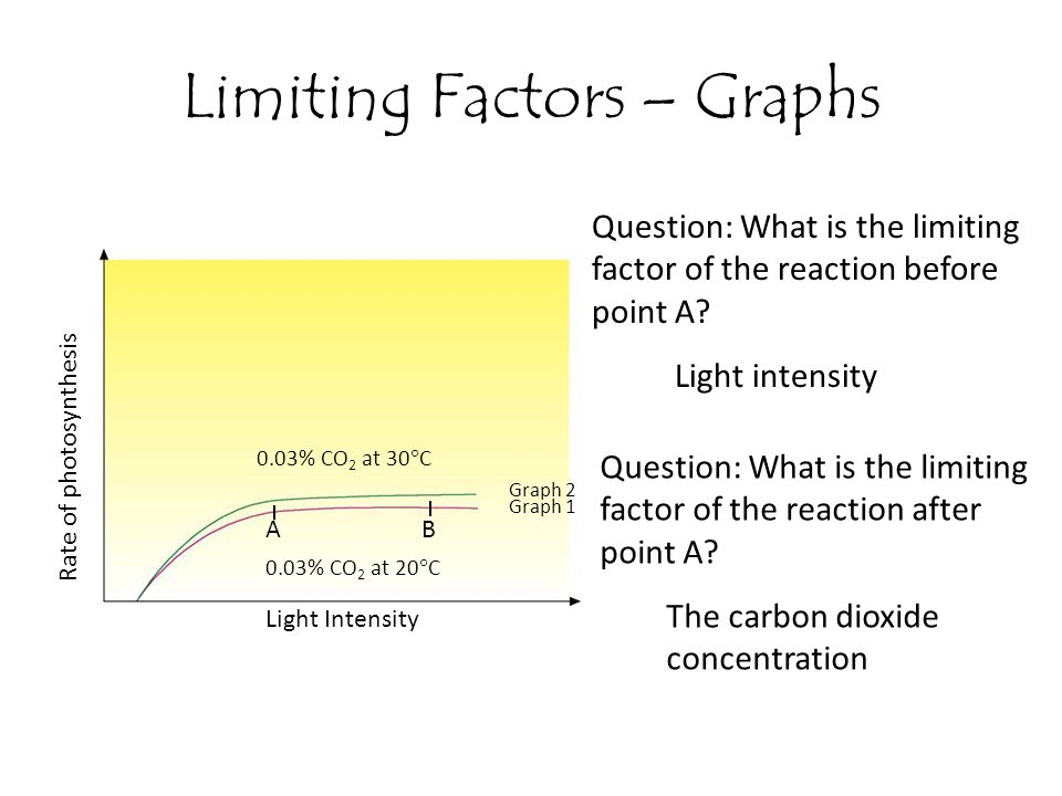 Limiting Factors – Graphs Rate of photosynthesis Light Intensity AB 0.03% CO 2 at 30  C 0.03% CO 2 at 20  C Graph 1 Graph 2 Question: What is the li