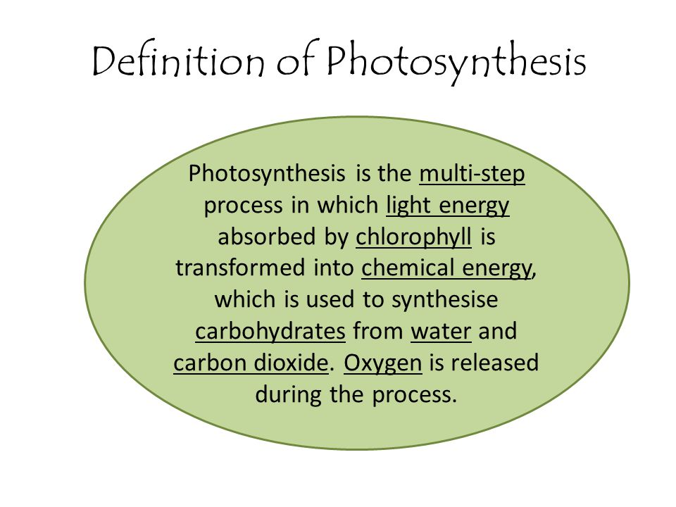 Definition of Photosynthesis Photosynthesis is the multi-step process in which light energy absorbed by chlorophyll is transformed into chemical energ