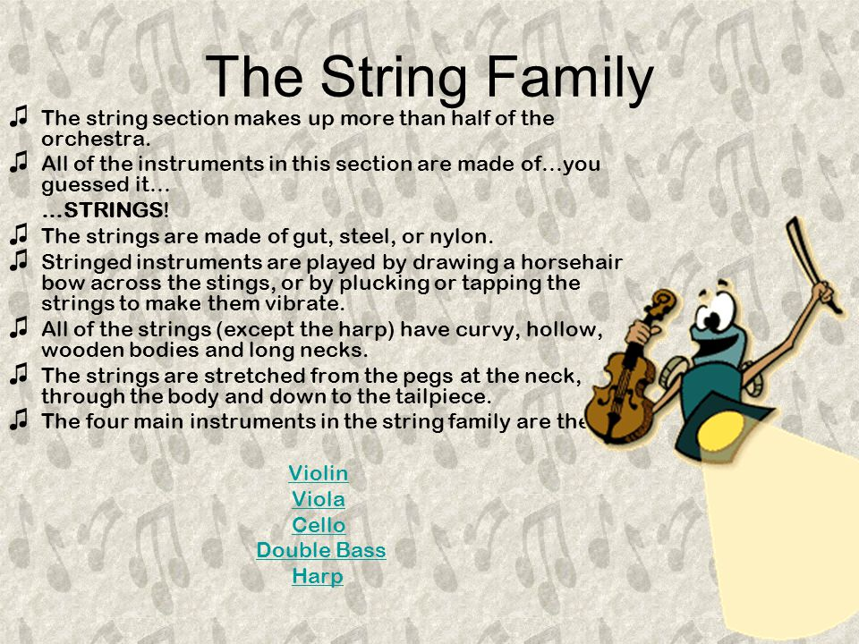 The String Family ♫T♫T he string section makes up more than half of the orchestra.