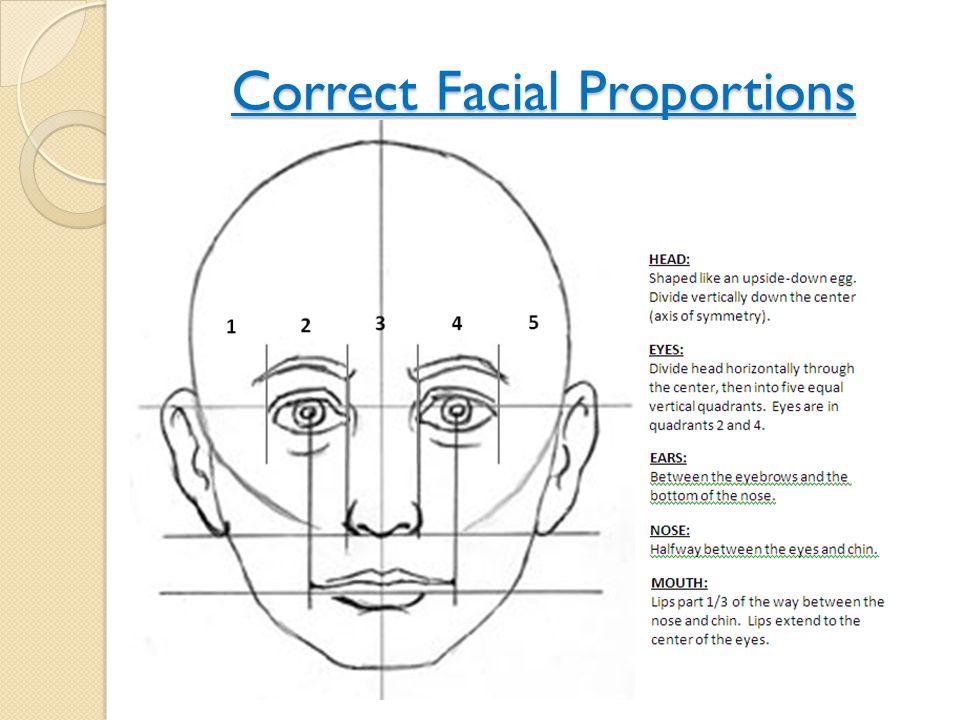 Correct Facial Proportions