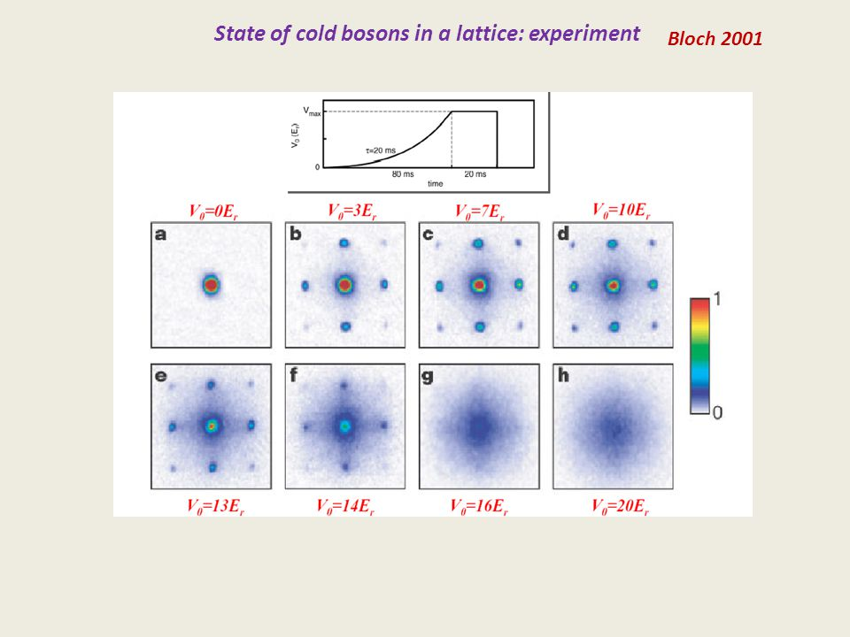 State of cold bosons in a lattice: experiment Bloch 2001