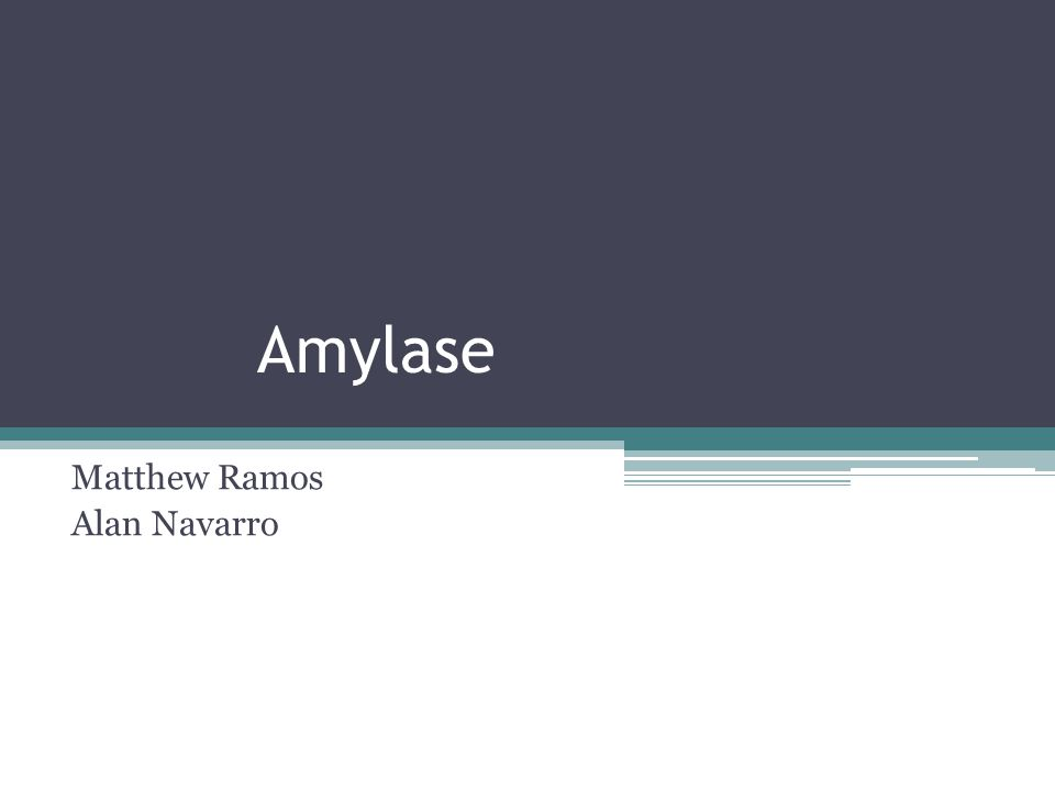 Quiz!!!!!!!!!!!!!!!!!!!!!!!!!!!!.What is the function of Amylase in the body.